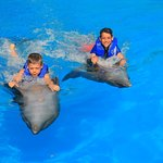 Brothers riding the dolphins