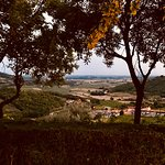 Photo of La Montanella