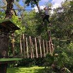 Bilde fra Central Florida Zoo & Botanical Gardens