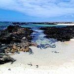 Foto de Lagunas y Playa de El Cotillo