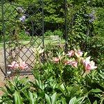 Foto de Meadowlark Botanical Garden
