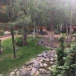 תמונה מRuidoso River Resort