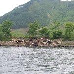 丹東中朝邊境照片