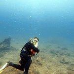 Bilde fra Blue Coral Diving