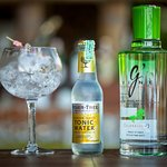 over 20 gins from around the world!