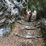Ancient foot paths