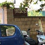 Bilde fra Farinoso