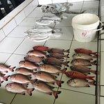 Foto de Male Fish Market