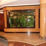 Akvárium u recepce
