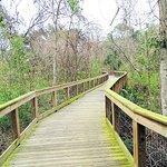 ภาพถ่ายของ Tree Hill Nature Center