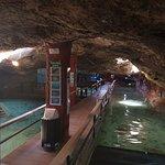 Foto de Aquarium Cap Blanc