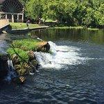 Photo de De Leon Springs State Park