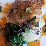The Grouper special