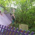 Bilde fra Enchanted Forest Theme Park