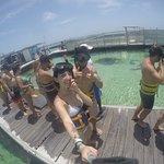 Bilde fra Seaquarium Punta Cana