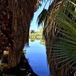 Billede af Agua Caliente Park