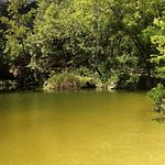 Swimming hole shut down due to bacteria