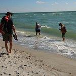 Bilde fra Blind Pass Beach