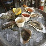 6 oysters, appetizer