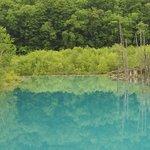صورة فوتوغرافية لـ Blue Pond