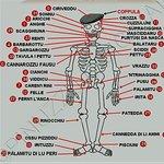 anatomia sicula :)
