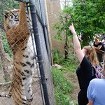 Foto van Cheyenne Mountain Zoo
