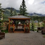 ‪A Bear and Bison Canadian Country Inn‬ صورة فوتوغرافية