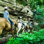 This is the horseback trail ride