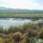 Tavacsi Marsh