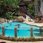 Park Las Aquilas Jungle Park ภาพถ่าย