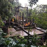 Foto de Las Pozas de Edward James