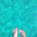 Dream Swim照片