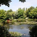 Bennetts Water Gardens照片