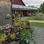 Cedar Circle plants and garden store