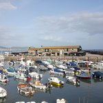 Lyme Regis Cobb and harbour