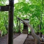 Foto de Shakujii Park