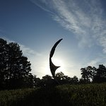 """Granger McCoy's """"Recovery Wing"""" sculpture at Swan Lake and Iris Gardens"""