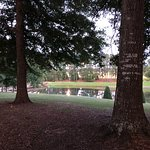 صورة فوتوغرافية لـ Johnny Henderson Park Trail