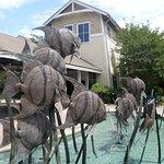 The Roanoke Island facility is one of three branches of the North Carolina Aquarium.