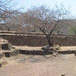 34 mil 658 hectareas entre el pie del volcan Tequila.