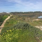 Photo of Ria Formosa Natural Park