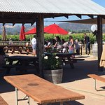 Larson Family Winery Foto