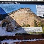 Фотография Checkerboard Mesa