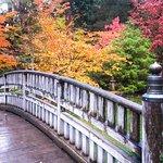 Billede af Manito Park