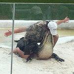 Everglades Holiday Park resmi