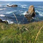 Foto de Yaquina Head Outstanding Natural Area