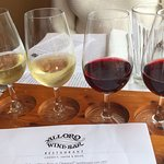 Flight of four wines from South Africa.
