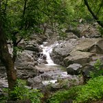 The one of many streams that you get to witness during monsoons