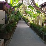 The alley to the villas
