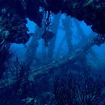 Photo of Sea Experience